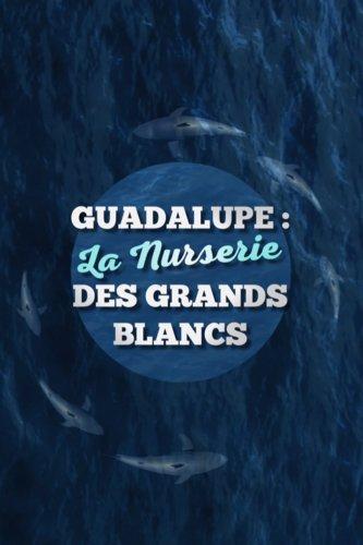 Guadalupe : La Nurserie des grands blancs