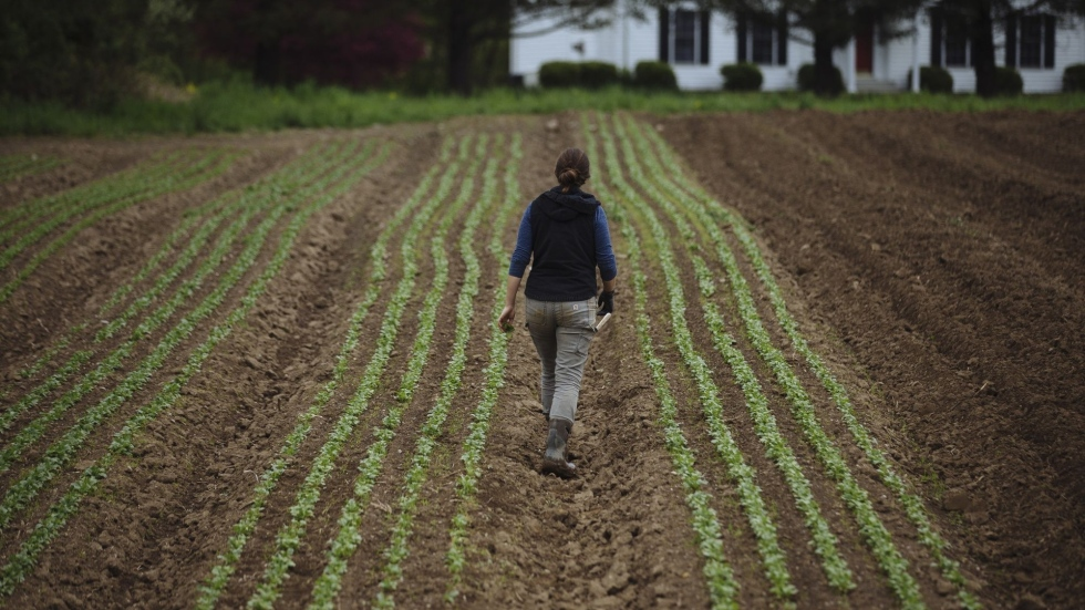 China-U.S. tensions could have ripple effect on Canadian farmers: The Globe's Willis