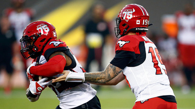 'I truly like the colour green': Playing Riders again not getting old for Stamps