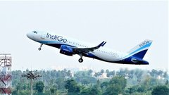 IndiGo Aims for Full Domestic Capacity by December, CEO Says